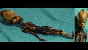 Proyek Rahasia Penelitian Terhadap Alien